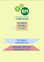 INFORME ECONOMICO 2018 PRESUPUESTO 2019